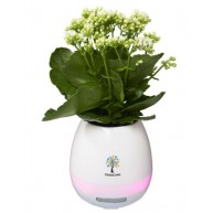 Green Thumb Flower Pot Bluetooth Speaker