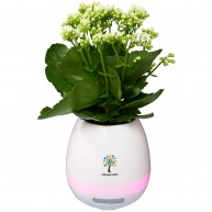 Green Thumb Flower Pot  Bluetooth® Speaker