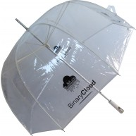 PVC Colour Umbrella