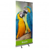 Mosquito Roll Up Banner